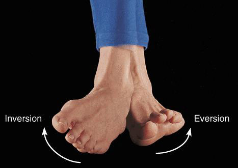 Укрепление сустава стопы всё о болезни ортроз суставов